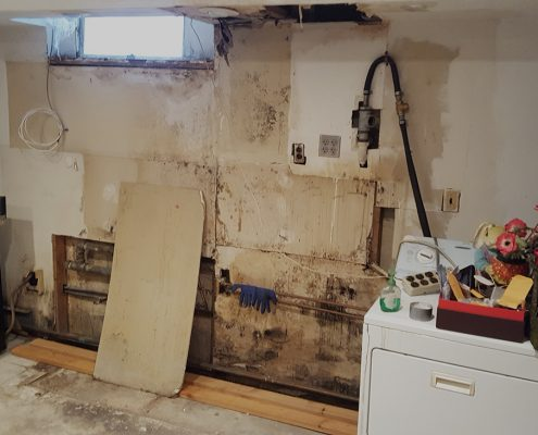 Mold Damage Long Island NY