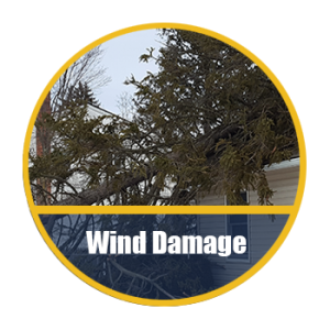 Wind & Storm Damage Restorations Long Island NY